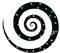 spirale, © logo di Antonella Barina